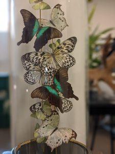 antieke stolp met mix vlinders