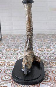 struisvogelpoot