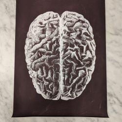 poster hersenen